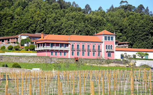 Sociedade Agrícola - Quinta de Vila Meã, Lda