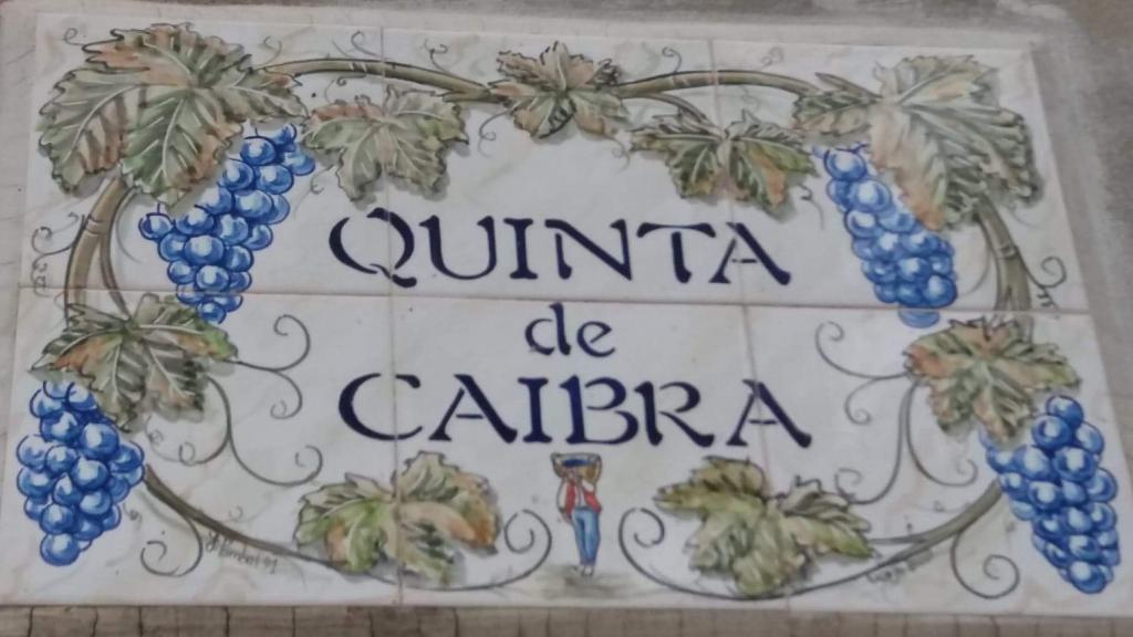 Jovens Empresários Agrícolas Nunes Garcia Lda